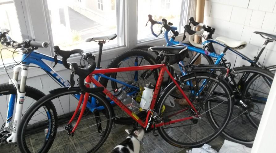 My Bike Family